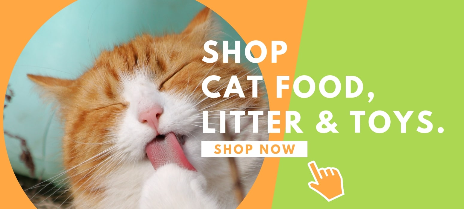 Shop cat food, cat litter and cat toys